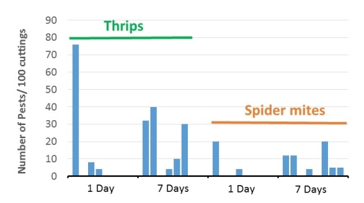 graph for June 7 blog